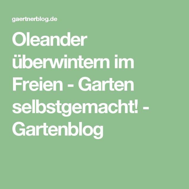 Oleander überwintern im Freien - Garten selbstgemacht! - Gartenblog