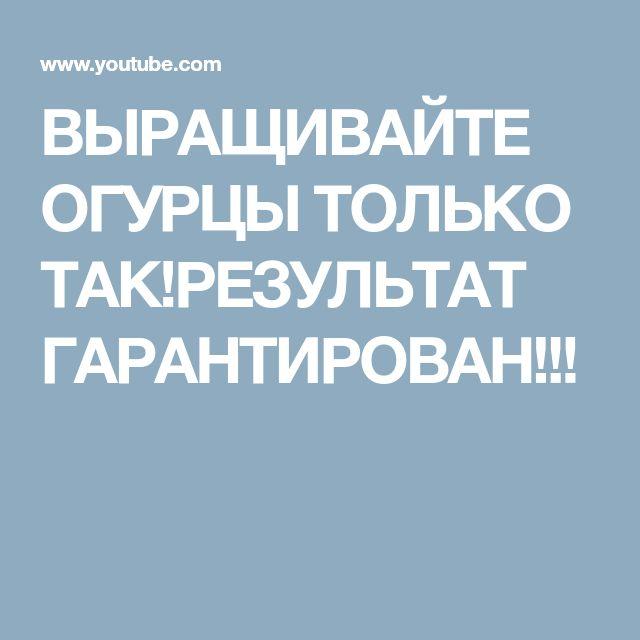 ВЫРАЩИВАЙТЕ ОГУРЦЫ ТОЛЬКО ТАК!РЕЗУЛЬТАТ ГАРАНТИРОВАН!!!