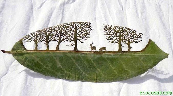 Arte verde: esculpir hojas - Ecocosas