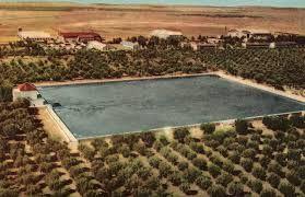 Menara è un antico uliveto, ancora coltivato, irrigato con una piscina rettangolare, alimentato, per oltre 700 anni, attraverso una linea di trenta chilometri dalle montagne. Questo non è in senso stretto un laghetto, ma l'acqua non è attualmente chiaro. Una piattaforma di metallo rovinare questa decorazione principesca che è stato utilizzato per l'amore dei sultani nell'incantevole tetto a padiglione piramide. http://www.jardin-menara.com/it/