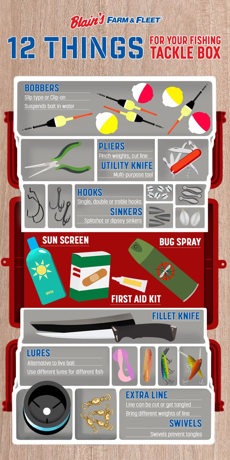 Keep this infographic handy when packing your fishing tackle box.