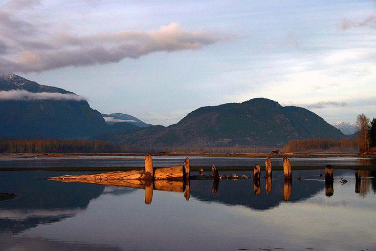 Fraser River - Chilliwack, British Columbia