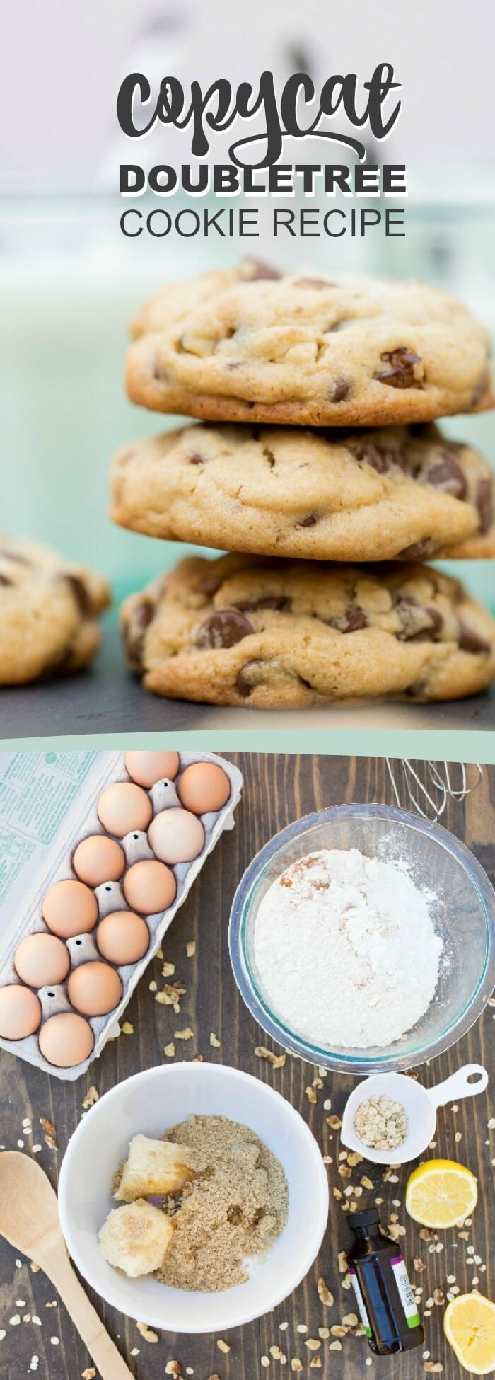 Best doubletree cookie recipe - copycat of the famous cookie recipe from Hilton Doubletree hotels via @spaceshipslb(Best Chocolate Muffins)