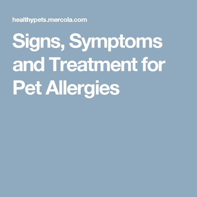 Signs, Symptoms and Treatment for Pet Allergies