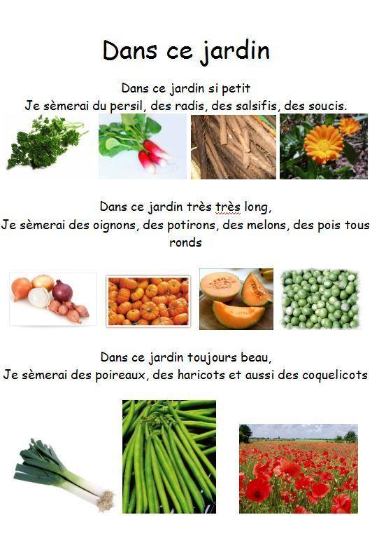 Voici quelques comptines sur le thème des graines, du jardin: Cinq_gros_pois Dans_ce_jardin DANSONS_LA_CAPUCINE Un_haricot_vert ...