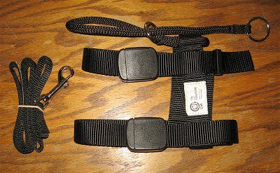 illusion dog training collar