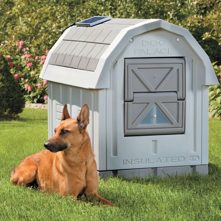 is your pampered furry best friend in the market for a better dog house