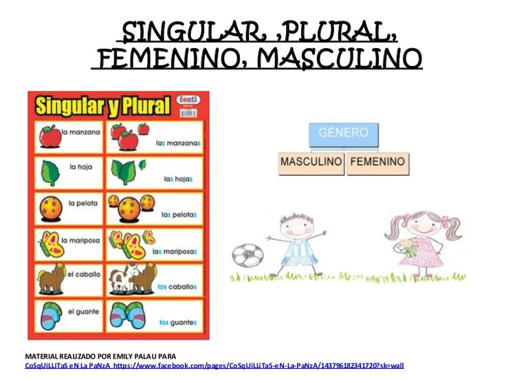 SINGULAR, ,PLURAL, FEMENINO, MASCULINO (CON ACTIVIDADES )