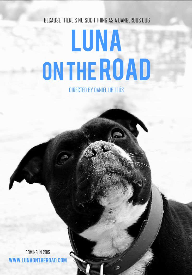 'Luna on the Road' official movie poster. Visit http://www.lunaontheroad.com