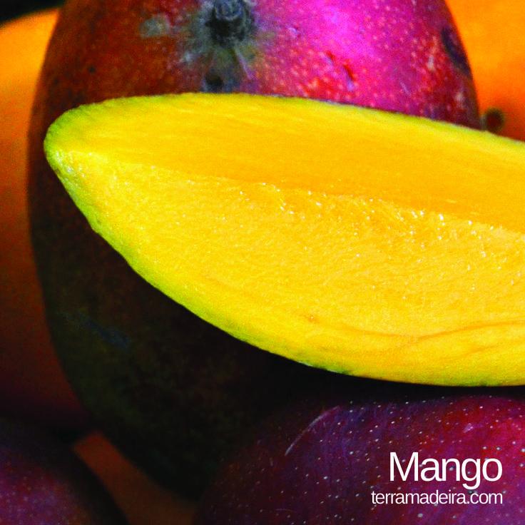 Who loves mangos? #terramadeira #mango #fruit #exoticfruit