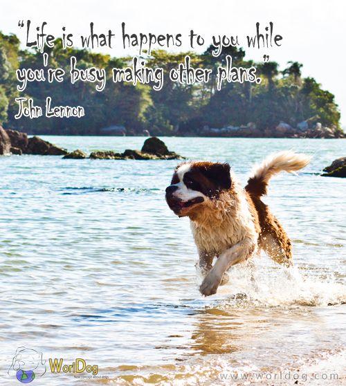 Daily Inspiration #16 - http://worldog.com/daily-inspiration-16
