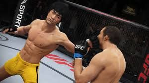 Image result for ufc video game
