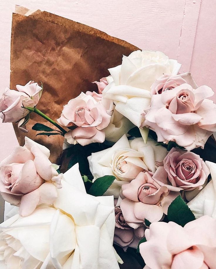 Inspirational Quotes On Pinterest: 1000+ Ideas About Rose Wallpaper On Pinterest