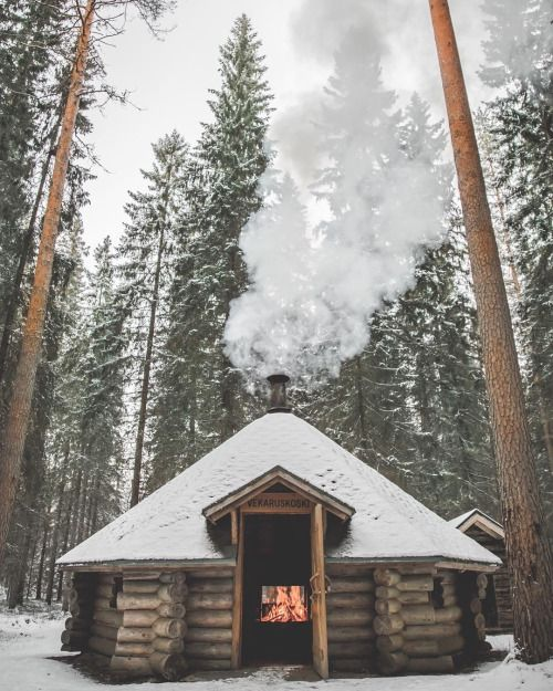 Ein kleines warmes Blockhaus im Wald. Mehr Infos auf www.pineca.de