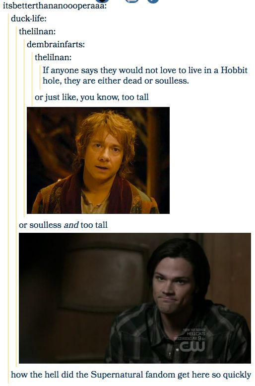 When they went above and beyond the post requirements:   18 Times The Supernatural Fandom Hilariously Hijacked Tumblr Posts