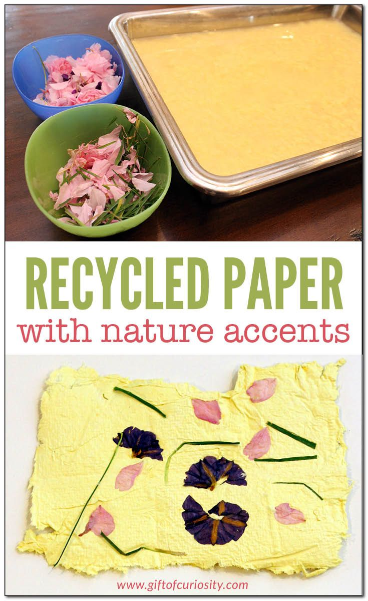 Recycled paper with nature accents - SRC 2017 program - Canada theme - use maple leaves