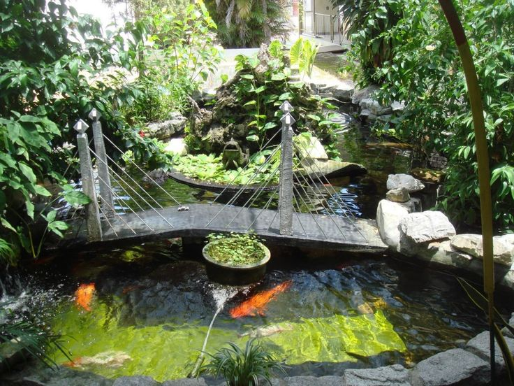 17 Best ideas about Fish Pond Pumps on Pinterest Pond waterfall
