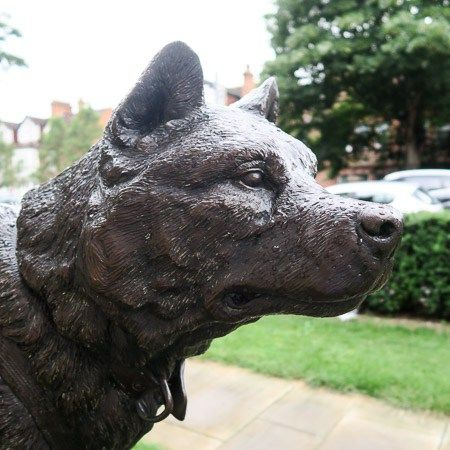 Sled dog monument at the Scott Polar Research Institute, Cambridge | Jill Browne