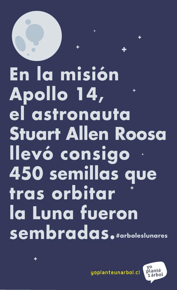 En la misión Apollo 14 (1971), el astronauta Stuart Allen Roosa (ex combatiente de incendios #forestales) llevó consigo 450 #semillas que volvieron a la Tierra para convertirse en #arboles lunares.