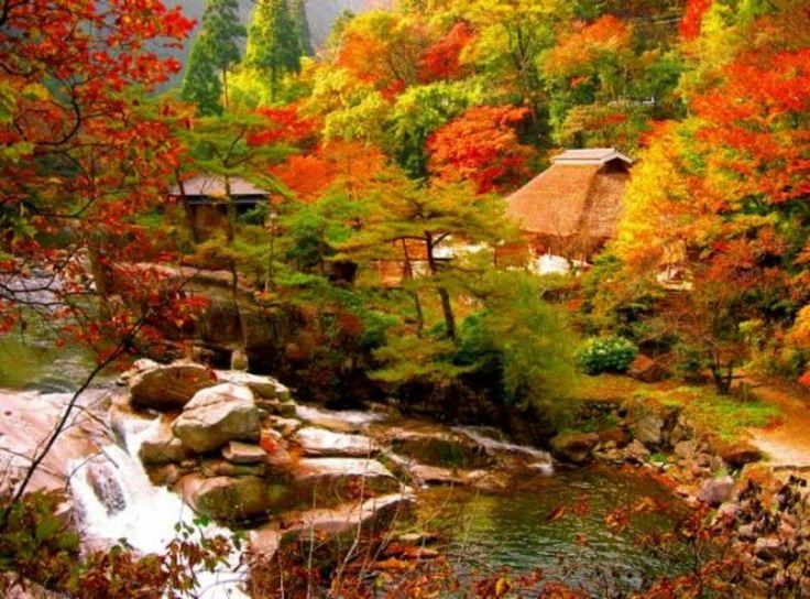 秋はアクティブに楽しもう!11月の岡山旅行おすすめ20選はココ!