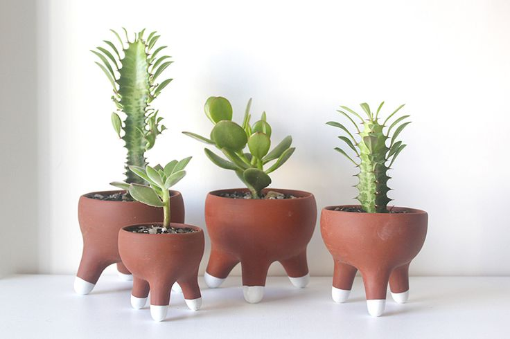 Vasos terracota / terracota pots Paz! design