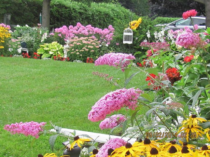 In Full Bloom - These garden pictures are from my from and backyard. September 2014. Looking out my front door The view from…