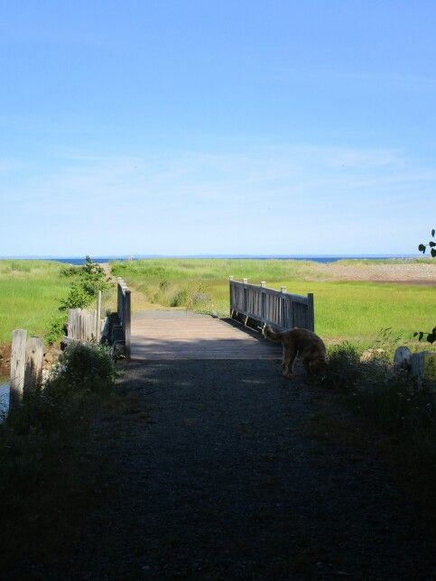 Boardwalk to Cristal Cliffs, Antigonish, NS