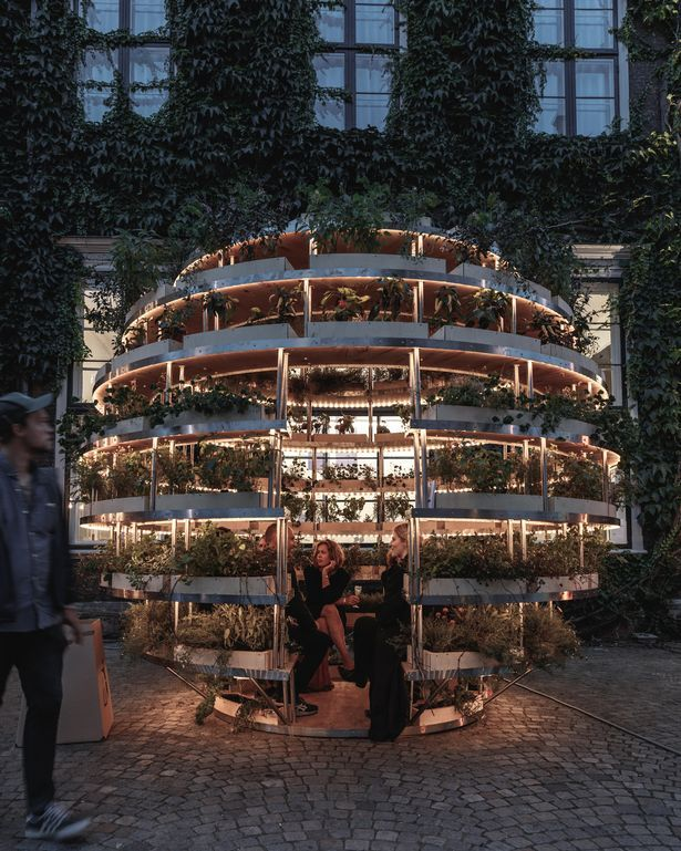 BY MARC WALKER Ikea has come up with a flatpack garden so city dwellers with little space can enjoy a green patch all of their own. The Swedish furniture giant has launched the Growroom - a DIY 9ft tall sphere for nurturing plants, veg and herbs that you can sit in with your family and friends.…