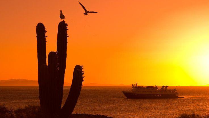 baja mexico sunset california (Credit: Ralph Lee Hopkins/National Geographic Creative)
