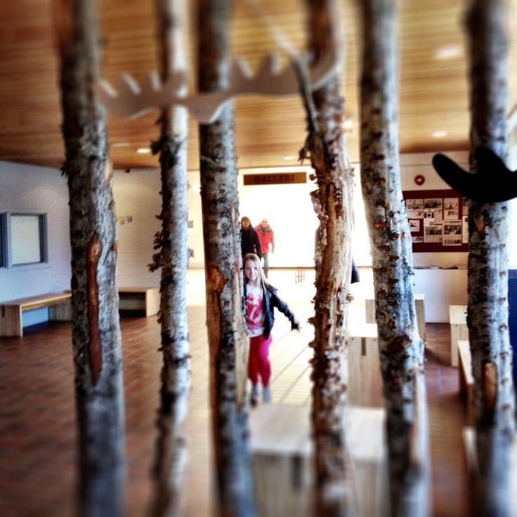 Skogmuseet