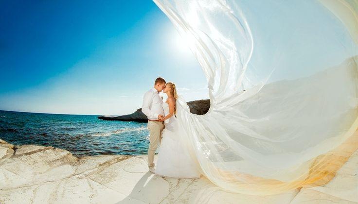 Картинки по запросу свадьба фото | Свадьба, Картинки