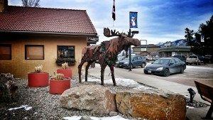 Rusty Moose in Invermere