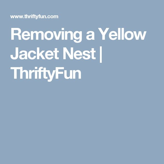 Removing a Yellow Jacket Nest | ThriftyFun
