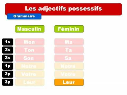 French lesson: Les adjectifs possessifs