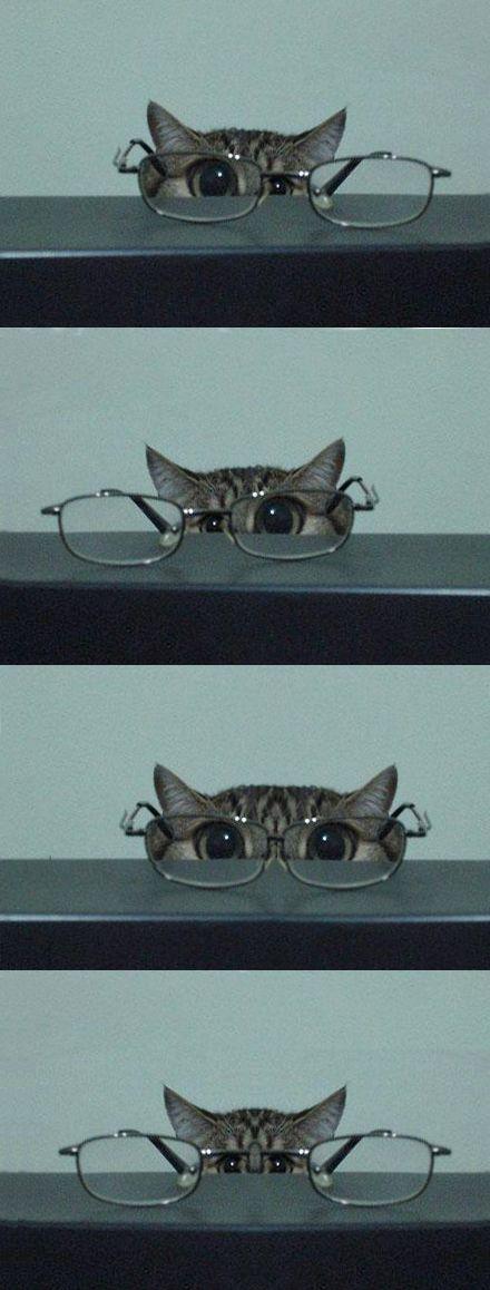 Hipermetropía. A través de unas gafas con hipermetropía los ojos se ven un poco más grandes.