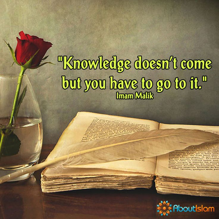 Search for knowledge.   #Knowledge #Education #Islam