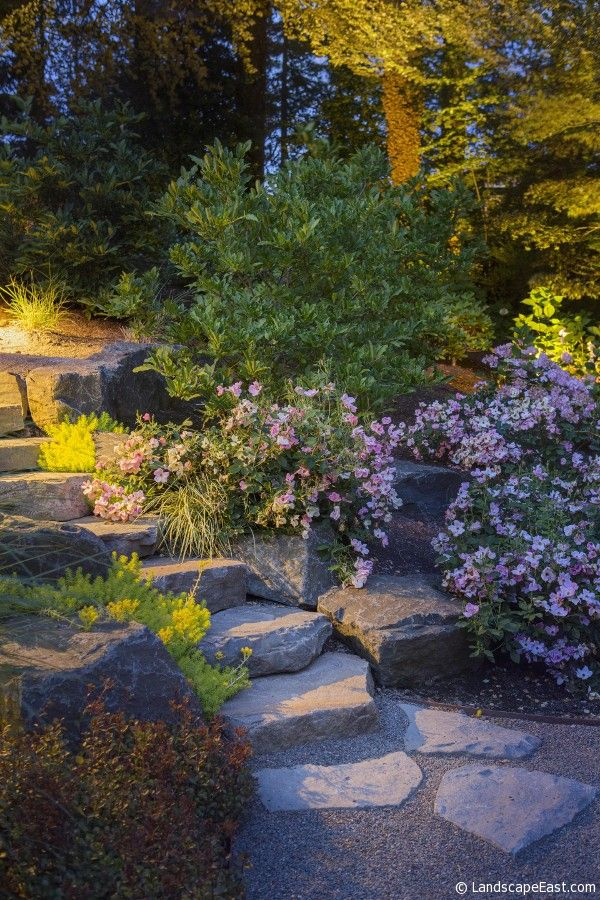 33 best outdoor landscape lighting images on pinterest exterior control lighting used for garden lights in portland view more photos http aloadofball Image collections