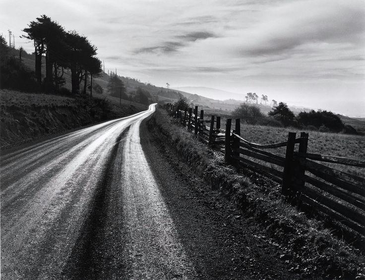 Road After Rain, 1960. Ansel Adams.
