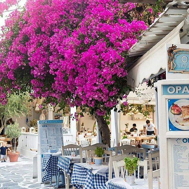 Travel to the awesome island of Mykonos ... #mykonos, on #cyclades!   By @sara.stromberg.