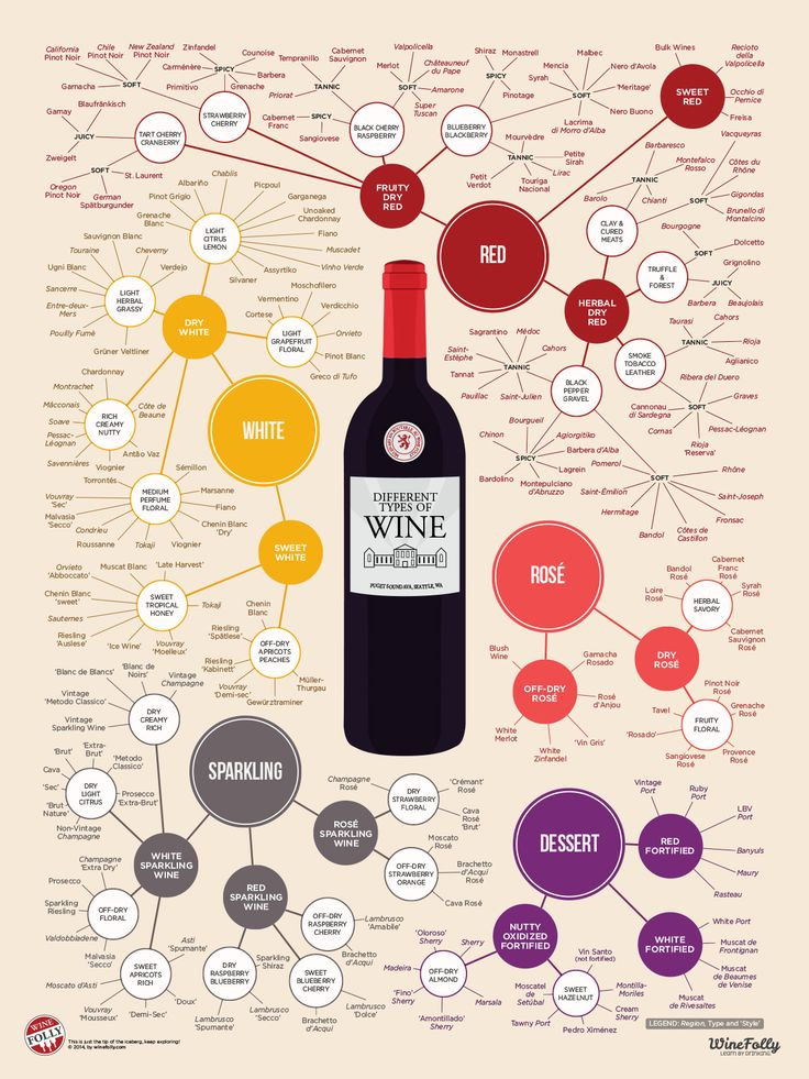 This infographic organizes almost 200 types of wine by taste and style. Take advantage of this chart as a great way to discover new types of wine!