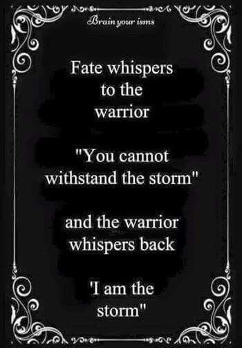 Loved this reminder...you ARE the storm...perfect! Have a powerful day folks! #warrior, #youcandoit, #bethestorm