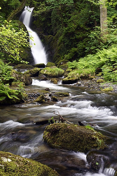 The beautiful Dolgoch waterfalls are situated about 4km from the village of Bryncrug. They consist of a series of waterfalls which cascade down a rocky wooded ravine in the mountainside into a deep pool below.