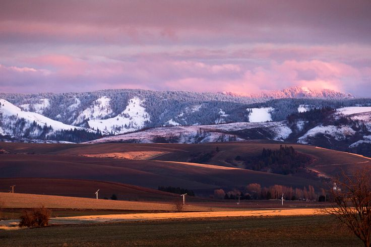 The foothills of the Blue Mountains, Walla Walla, Washington