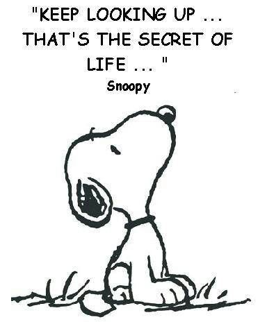 The secret of life - according to Snoopy~ :)  ''Manténte mirando hacia arriba... ese es el secreto de la vida''.