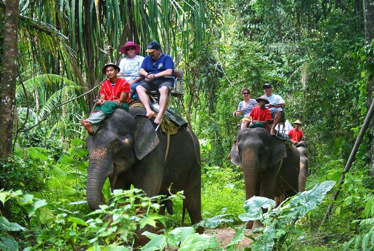Spending Easter Group Thailand & Malaysia 17 April for 9 Days includingIntrantional Flight - Emirates Airline5 Nights PhuketAndkira patong beach - Hotel 4 Star - Great LocationTransfer Airport Hotel Airport in PhuketDomestic Flight from Phuket to Kuala Lumpur3 Nights Kuala LumpurHotel Transit Kuala Lumpur - 3 Star - Great LocationGenting Haighland & Buta Cave Tourtransfer Airport Hotel Airport In Kuala LumpurTravel Group With best ServiceEgyption Tour GuidePhotographerMedia...