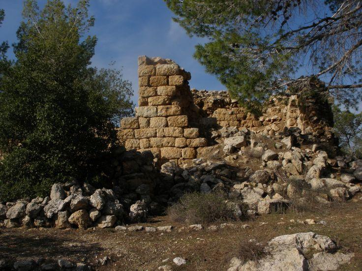 Ancient forest guard house, December 2013. Elan_Ezra_Photo