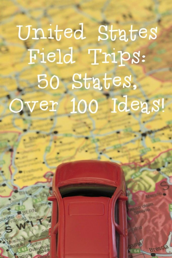 If  you're going on any road trips this summer, this post has ideas for stops in each state!