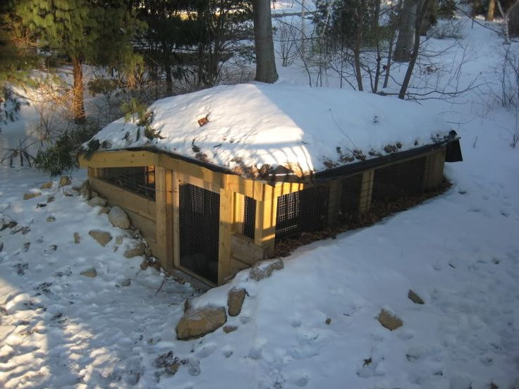 We're totally building one of these. Cheap to build, easy to heat underground chicken coop