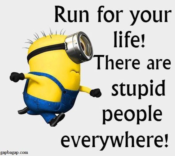 Funny Meme Of The Day By Minions