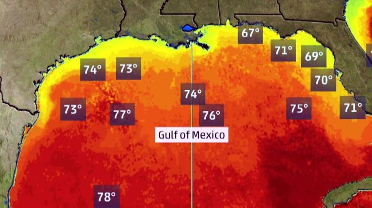 Meteorologist Danielle Banks shares how the Gulf of Mexico affect severe weather.